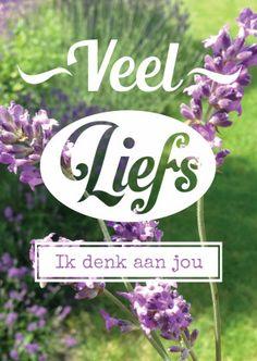 Fotokaart lavendel - veel liefs, ik denk aan jou!  Design: ByFlower  Te vinden op: www.kaartje2go.nl