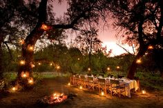 The Safari Partners helps fulfill the dreams of our travellers in creating the perfect African Safari for them. We are Vancouver's African Safari experts. Beach Tent, Beach Picnic, Safari, Game Lodge, River Lodge, Private Games, Game Reserve, Outdoor Settings, Table Settings