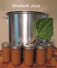 Our family recipe for rhubarb juice and how we preserve it for use later in the year. Chart for altitude adjustment included. Pickle Juice Uses, Pickle Juice Benefits, Rhubarb Juice, Fruit Juice, Rhubarb Recipes, Canning Recipes, Fruits And Veggies, Healthy Cooking, Healthy Food