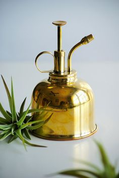 Authentic Brass Plant Mister - FREE air plant within US, planter, watering can, plant care, succulent care, home decor