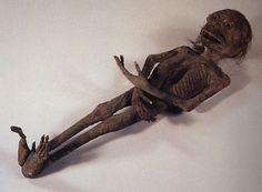The Yokai Files – Kappa – Mummies and Movies | Total-Japandemonium