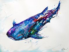 whale shark art More
