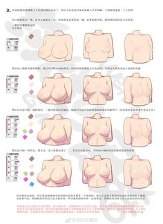 how to draw anime Drawing Practice, Drawing Poses, Drawing Tips, Figure Drawing, Digital Painting Tutorials, Digital Art Tutorial, Art Tutorials, Body Anatomy, Human Anatomy