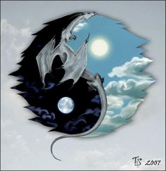 The difference is as clear as night and day; as yin and yang