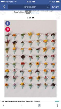 Cute flower wall
