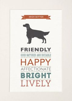 Irish Setter Dog Breed Traits Print