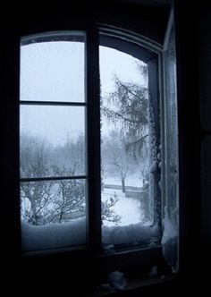 Winter wonder. Get under the Covers.