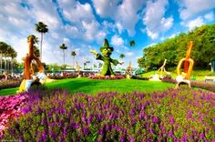Disney Hollywood Studios entrance