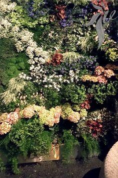 vivit.gomes.green.monnet.planting