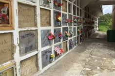 In the town of San Bernardo in Colombia, a small mausoleum houses mummies in glass cases, local residents born roughly within the last hundred years. deathternity.blogspot.com http://www.wsj.com/articles/in-this-small-colombian-town-people-love-their-mummies-1443664421
