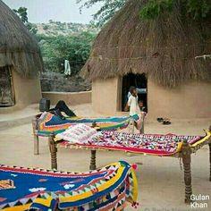 So fantastic Sindhi Cultural Rilli in beautiful Thari Chonrow