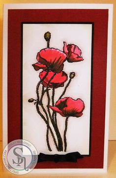 DL card. Sheena's poppies and daisies stamp using Spectrum Noir Aqua pens - slate, leaf green, scarlet, crimson and burgundy. Designed by Lesley McCloskey #crafterscompanion #spectrumnoir