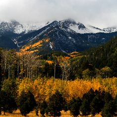 Experience Flagstaff's fall!