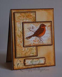 NOT BIRD,BUT NEAT CARD COLORS