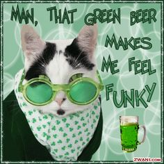 funny st. patrick day pictures | Funny St Patrick's Day Gif Animation (12)