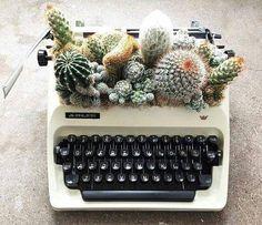 averymadelinee ➹ cactus in a typewriter planter - so cute! averymadelinee ➹ cactus in a typewriter planter - so cute! Source by lichalasucia. Plant Aesthetic, Aesthetic Style, Plants Are Friends, Deco Floral, Diy Garden, Cacti Garden, Garden Nook, Upcycled Garden, Garden Deco