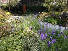 Gør din have lidt vildere Hotel Et Spa, Spa Luxe, Chelsea, Planters, London, Flowers, Outdoors, Gardening, Tips
