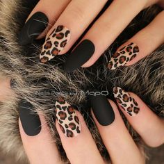 Matte Black / Nude or Burgundy Almond Leopard Print False / False Nails - - . - Matte Black / Nude or Burgundy Almond Leopard Print False / False Nails – – … – – - Cute Acrylic Nails, Acrylic Nail Designs, Cheetah Nail Designs, Fall Nail Art Designs, Glittery Nails, Black Nail Designs, Cute Simple Nail Designs, Black Glitter Nails, Coffin Nail Designs