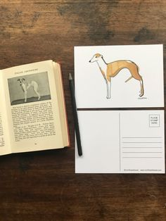 Items similar to Greyhound/Whippet Illustrated Limited Edition Postcard on Etsy Postcard Wall, Whippets, Dog Illustration, My Etsy Shop, Stamp, Handmade Gifts, Dogs, Vintage, Art