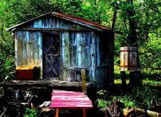 New Orleans swamp house. Via lordlars, Flickr.