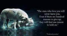 Petra Schmidt Shared Let the Wolves Run Free Photo