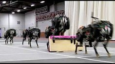 Cheetah Robot Leaps Over Obstacles