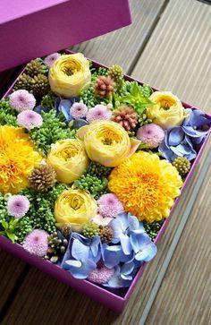 Pop Pop Pop!!! #box flower