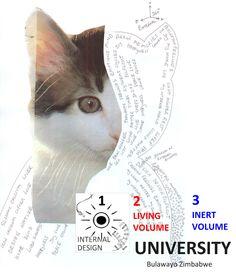 INTERNAL DESIGN UNIVERSITY - SIGNBOARD