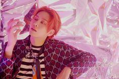 I got: Heechul. Kim Heechul, Leeteuk, Siwon, Super Junior Profile, Chanyeol, Programa Musical, Last Man Standing, Kpop, K Idols