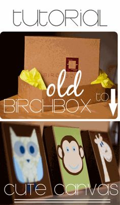 birchbox-to-canvas...I wonder if I could cover with cloth or mount pictures?