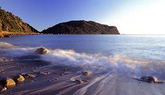 The West Coast, NZ