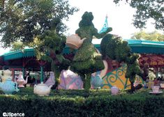 Alice topiary near tea party ride