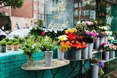 colorful flowers, just love a flowershop! Flower Bomb, My Flower, Flower Power, Fresh Flowers, Colorful Flowers, Beautiful Flowers, Happy Flowers, Flower Market, Flower Shops
