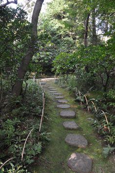 Nezu Museum Garden, Tokyo