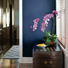 blue paint accent wall