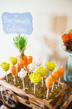 Peter Rabbit birthday. Garden cake pops!