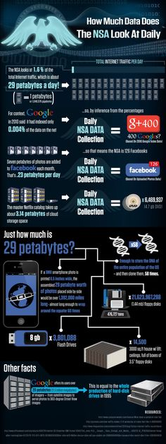 National Security Agency Daily Data Collection Infographic Infographic