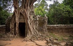 """Kambodscha: """"Temple Running"""" in Angkor Wat Angkor Wat Cambodia, Temple Ruins, City Gallery, Cambodia Travel, Travel Photography, Places To Visit, Around The Worlds, Pictures, Google Search"""