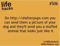 1000 life hacks is here to help you with the simple problems in life. Posting Life hacks daily to help you get through life slightly easier than the rest! Simple Life Hacks, Useful Life Hacks, Life Hacks Websites, Fun Websites, Hack My Life, Dog Hacks, Hacks Diy, Things To Know, Things To Think About