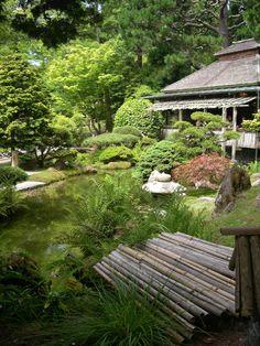 Japanese garden - tea house