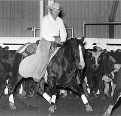 PEPPY SAN BADGER, foaled in 1974, was a sorrel  stallion bred by Joe Kirk Fulton of Lubbock, Texas by the cutting sire Mr San Peppy and out of Sugar Badger, a daughter of Grey Badger III. He was born at Fulton's ranch and began early basic training there before he became ill with strangles. Upon recovering from the illness, Peppy San Badger was sold to the King Ranch of South Texas in 1977, where he remained a breeding stallion until his death.