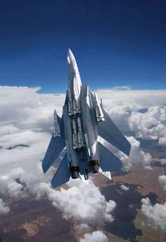 F-14 Tomcat armed with Phoenix missiles