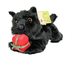 Aurora Nature Babies Christmas Puppies 8 Inch Plush Toys Siberian Husky Black Scottie and Border Collie *** Click photo to examine even more information. (This is an affiliate link). Top Toddler Toys, Christmas Puppy, Click Photo, Natural Baby, Scottie, Border Collie, Aurora, Husky, Plush