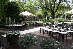 the willows st kilda - Google Search