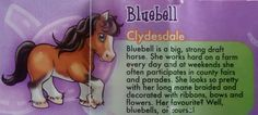 Pony in my Pocket -Series 1 - Pony Personality Profiles - Bluebell the Clydesdale - Series 1