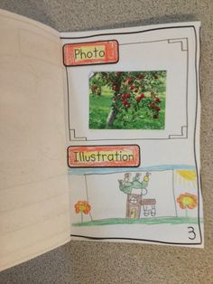 Last week was apple week, and if you know me, you know I LOVE planning some thematic activities about apples! Such a fun time of year! Nonfiction Activities, Apple Activities, Holiday Activities, Nonfiction Books, Book Activities, 2nd Grade Ela, 1st Grade Writing, First Grade Classroom, Second Grade