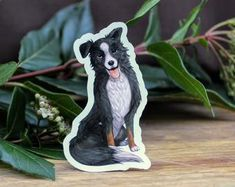 Black and White and Brown Border Collie Die Cut Dog Sticker Brown Border Collie, Etsy Seller, Handmade Items, Stickers, Black And White, Creative, Dogs, Prints, Vintage