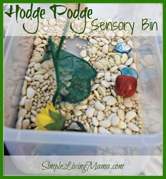 Ideas for making a hodge podge sensory bin with what you have at home!