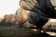 Wrapped Trees, Fondation Beyeler and Berower Park, Riehen, Switzerland, 1997-98