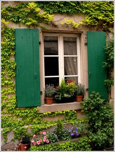 bonparisien:  window pane, Riquewihr, Haut-Rhin France (by Mo Westein)